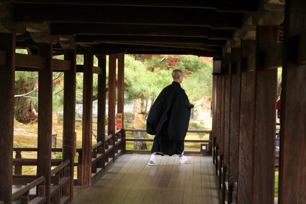 そうだ!京都へ行こう 2 024