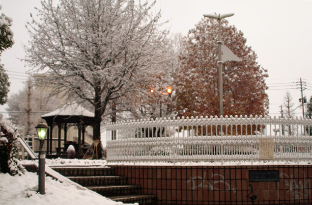 雪の朝 007
