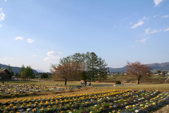 2010GW in長野 045