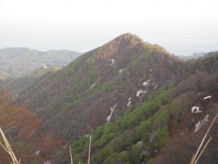 100503米山 (9)50