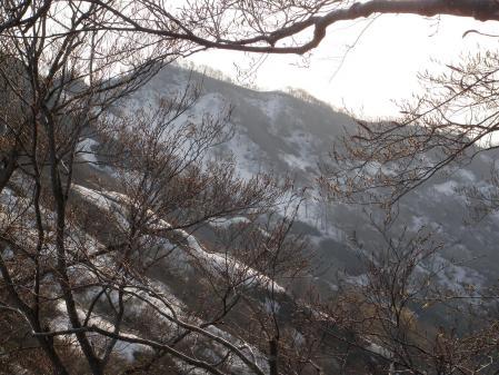 100503米山 (8)40
