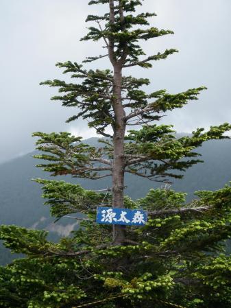 100704八幡平 (4)80