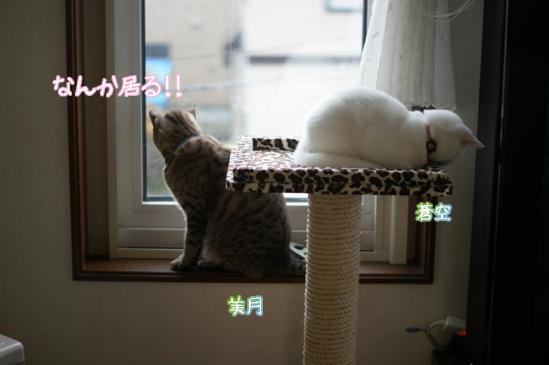 1_20111125095412.jpg