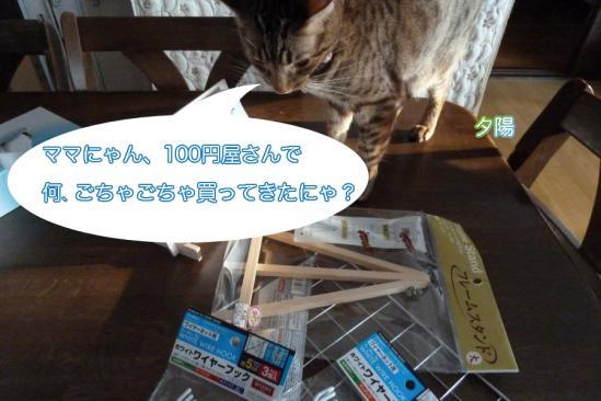 1_20111213234700.jpg