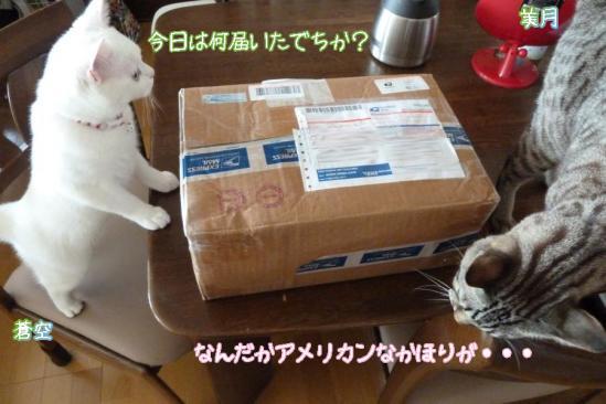 1_20111221233516.jpg