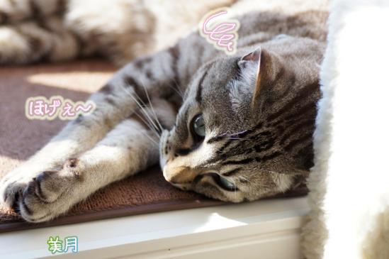 2_20120112221041.jpg