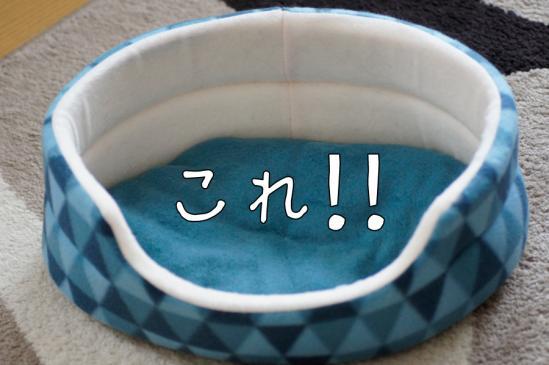 2_20120301080006.jpg