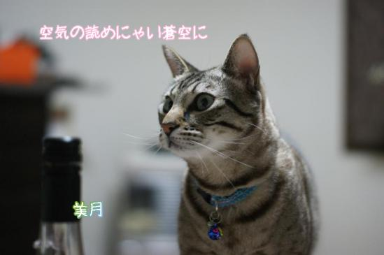 3_20111230225444.jpg