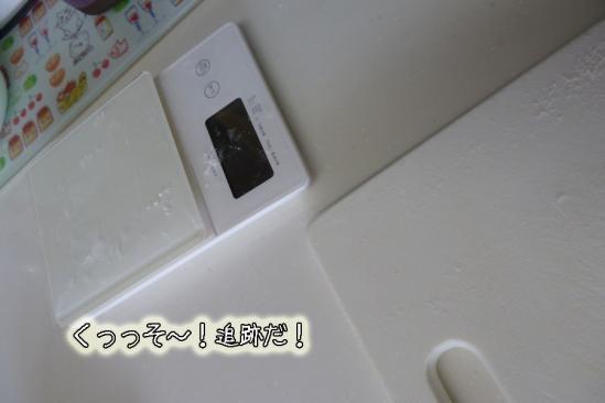 3_20120104110030.jpg
