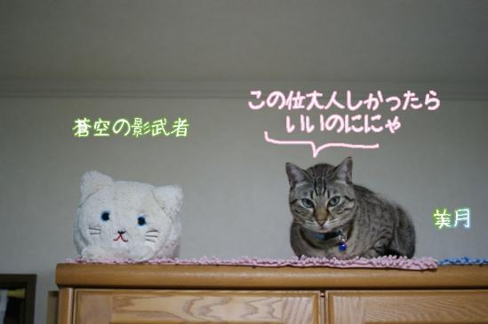 3_20120119224955.jpg