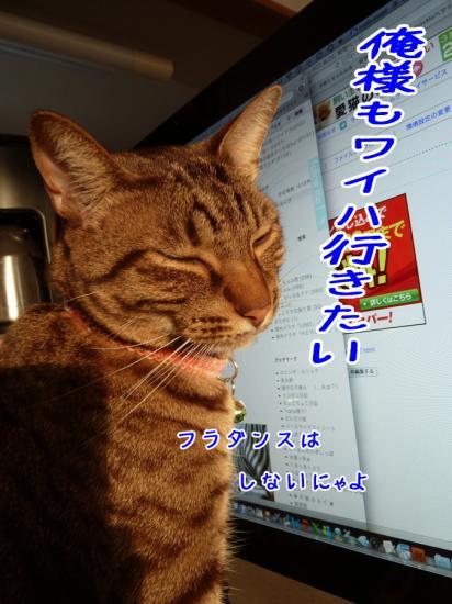 3_20120208222646.jpg