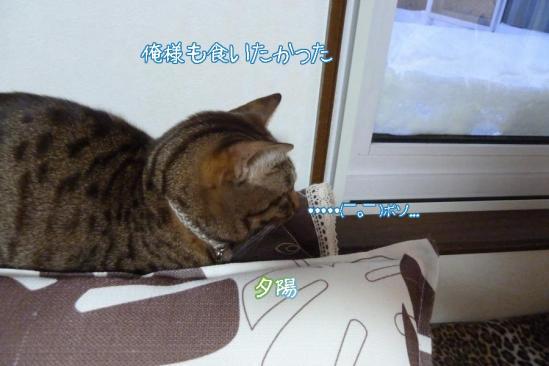 4_20111213101026.jpg