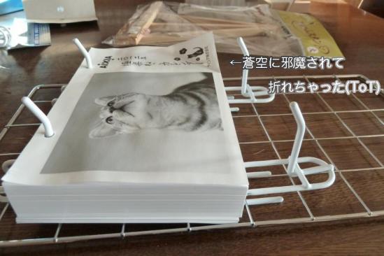 4_20111213234653.jpg