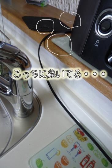 4_20120104110030.jpg