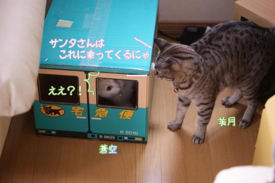 5_20111223080458.jpg