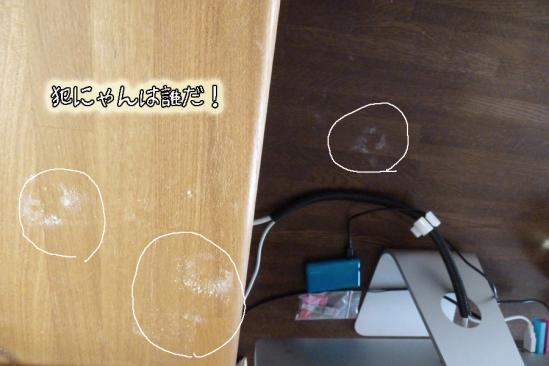 5_20120104110012.jpg