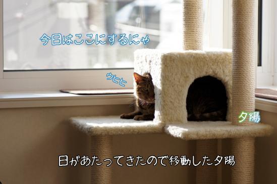 6_20120115220455.jpg