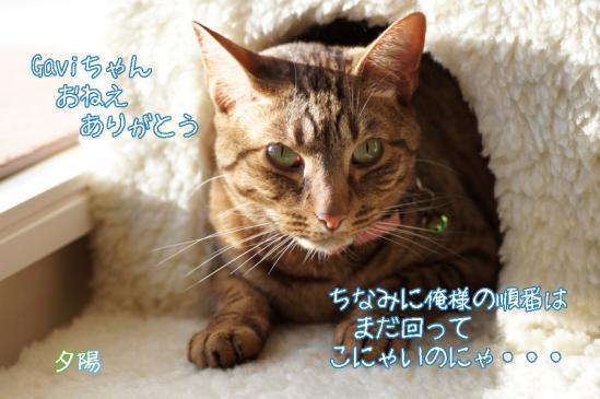 6_20120119095041.jpg