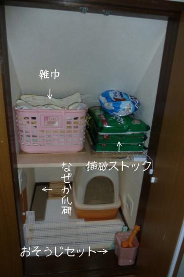 6_20120129235619.jpg