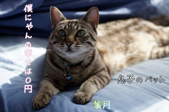 6_20120301080004.jpg