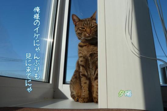 7_20111230231147.jpg