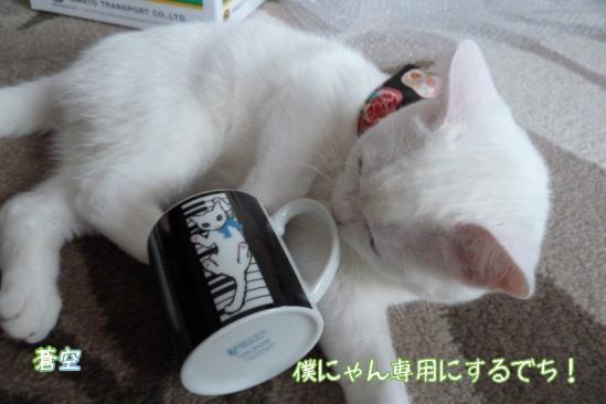 7_20120127074105.jpg