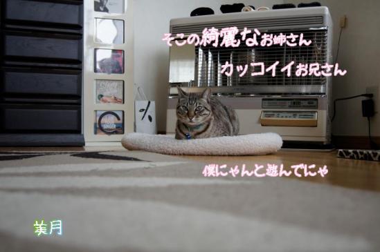 9_20111228103101.jpg