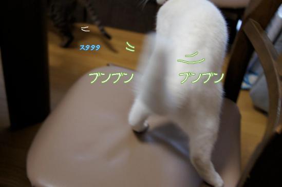 9_20111229093934.jpg