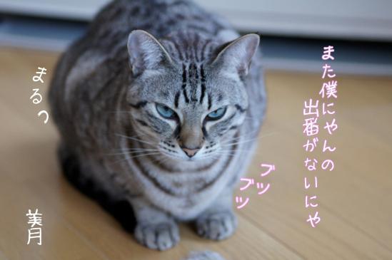 th_7.jpg