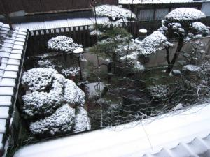 大阪市内も雪