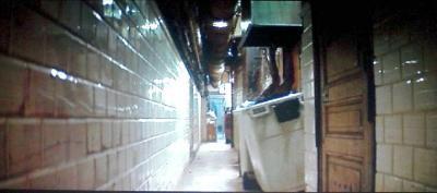 最後は、ネズミかゴキブリが出てきそうな汚いゴミ箱に突っ込むニキータ。
