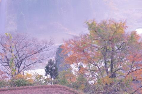 DSC_7325-B8.jpg