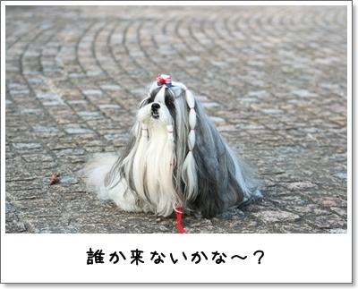 2009_1018_155427AA.jpg