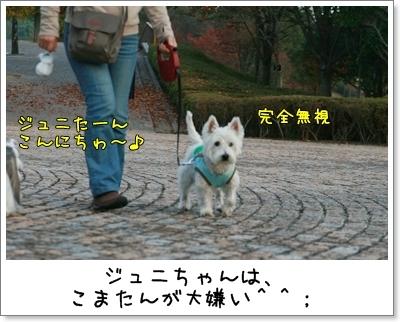 2009_1018_155606AA.jpg
