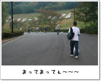 2009_1018_161932AA.jpg