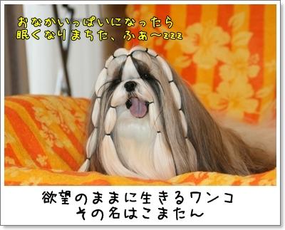2009_1020_073614AA.jpg