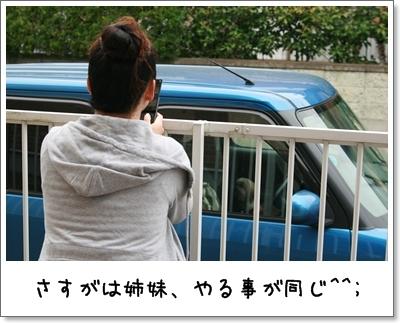 2009_1024_124335AA.jpg