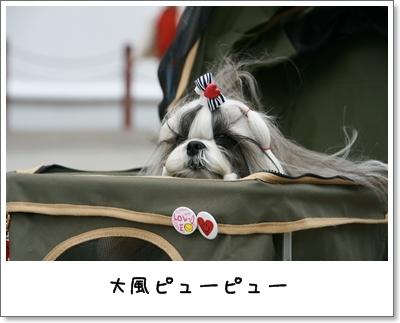 2009_1024_133550AA.jpg