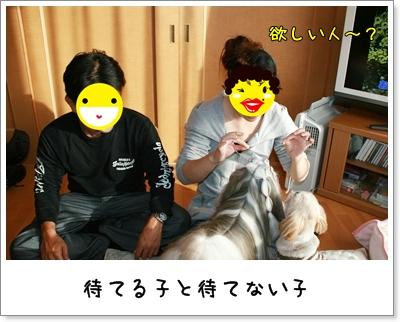 2009_1025_151123AA.jpg