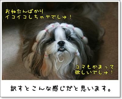 2009_1028_194220AA.jpg