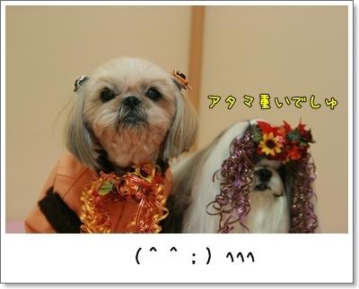 2009_1031_181452AA.jpg
