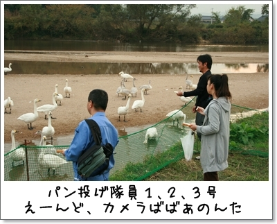 2009_1101_154410AA.jpg