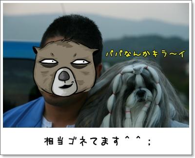 2009_1101_161648AA.jpg