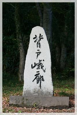2009_1103_150416AA.jpg