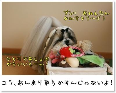 2009_1108_133920AA.jpg
