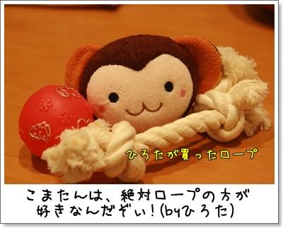 2009_1118_201543AA.jpg