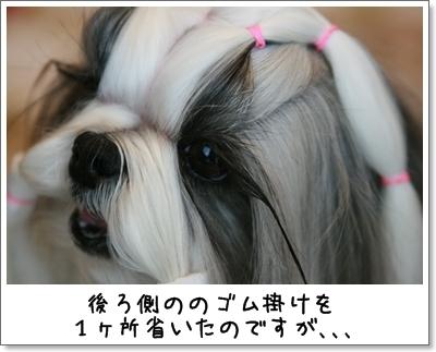 2009_1120_073616AA.jpg