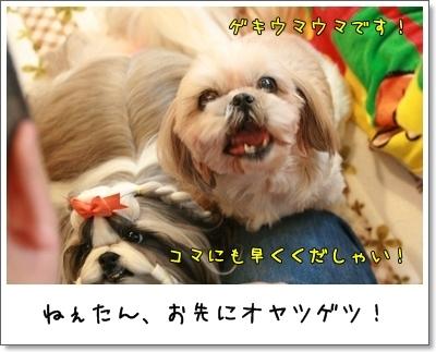 2009_1122_114129AA.jpg