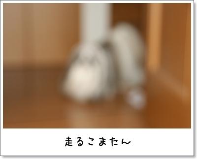 2009_1127_073620AA.jpg