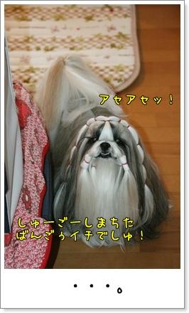 2009_1127_073714AA.jpg
